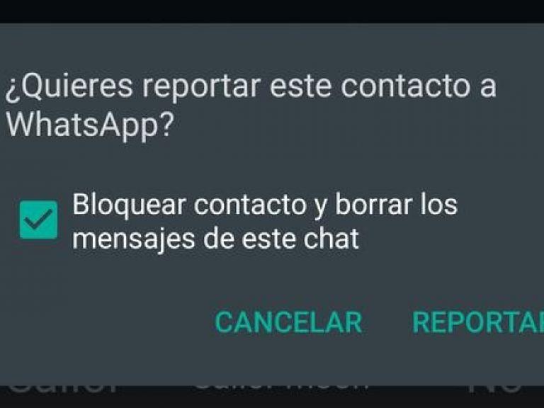 WhatsApp: Cómo y por qué reportar un usuario en la plataforma